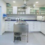 Clínica Veterinaria Ortuella - Ortuella - Prequirofano